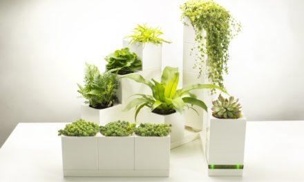 LeGrow: Μικροί κήποι εσωτερικού χώρου, όπου είναι πανεύκολο να διατηρήσεις