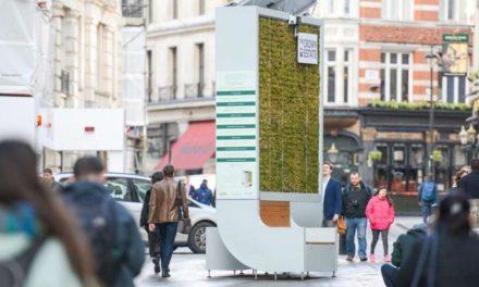 City Tree: Ένα παγκάκι που καθαρίζει την ατμόσφαιρα!