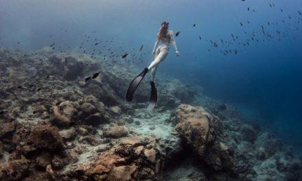 Η πρώτη υποβρύχια έκθεση φωτογραφίας παγκοσμίως πρόκειται να φιλοξενηθεί στον βυθό της Αμοργού