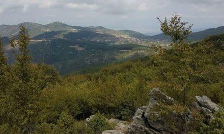 Τεχνολογική ομπρέλα προστασίας από πυρκαγιές υπαίθρου στον δήμο Θέρμης