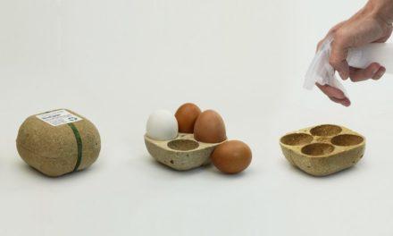 Ελληνική συσκευασία για αβγά που φυτεύεται και βλασταίνει