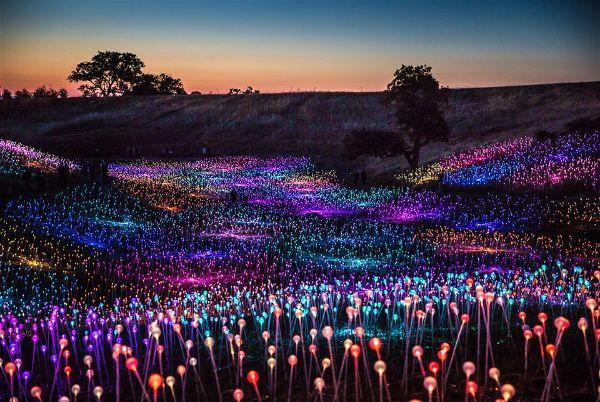 «Το λιβάδι του φωτός»: Μια φαντασμαγορική εγκατάσταση 58.000 LED στην Καλιφόρνια
