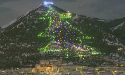 Το μεγαλύτερο χριστουγεννιάτικο δέντρο σύμφωνα με το ρεκόρ Γκίνες