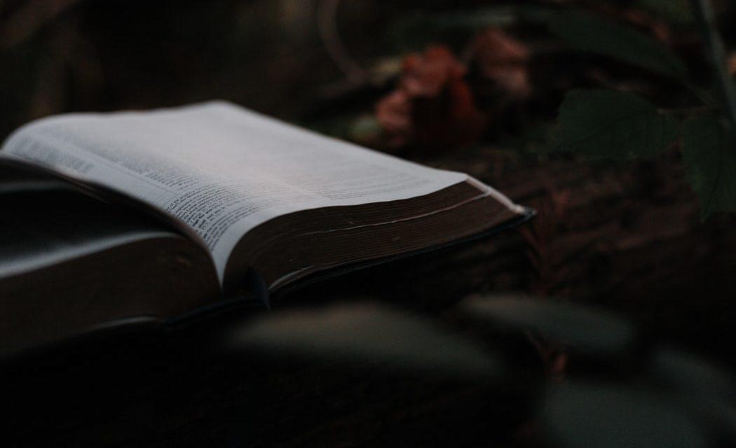 Ο μυστηριώδης Τούρκος «Ρομπέν των Βιβλίων»