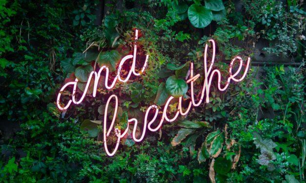 4 μυστικά από το φιλόσοφο Σενέκα για μια ζωή χωρίς άγχος