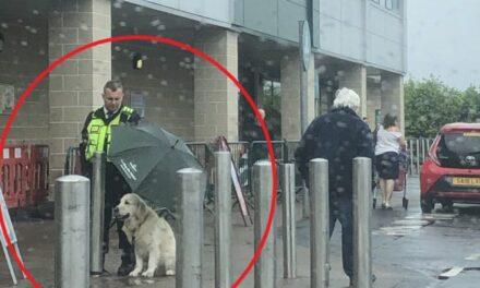 Άνδρας security κράτησε ομπρέλα σε σκύλο για να μη βραχεί κι έγινε παγκόσμιο viral