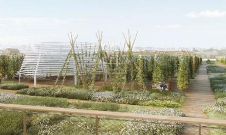 Αστικές καλλιέργειες σε ταράτσα εκθεσιακού κέντρου στο Παρίσι!