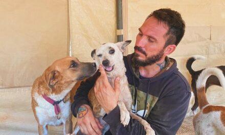 Έβαλε στο σπίτι του 300 σκυλιά για να τα σώσει από τυφώνα και το διαδίκτυο υποκλίνεται στην μεγαλοψυχία του