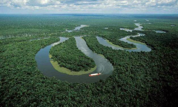 Η λαμπρότητα του Αμαζονίου και γιατί πρέπει να τον προστατέψουμε